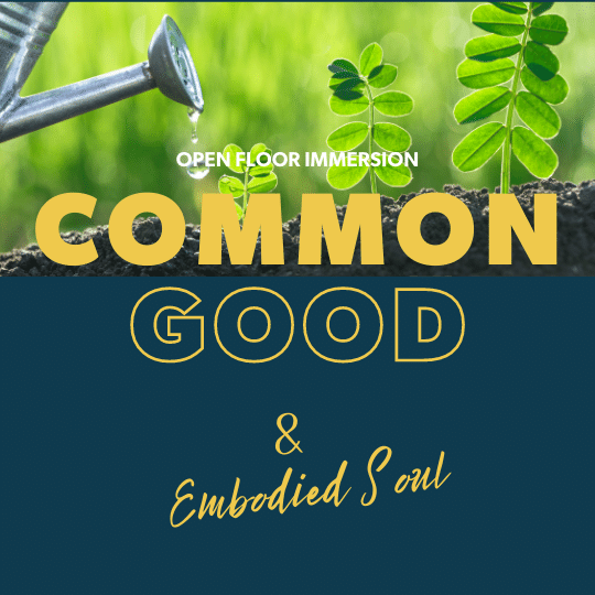Common Good & Embodied Soul